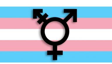 Transsexualität bei Kindern oder Eltern