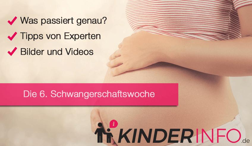 6. SSW - Schwangerschaftswoche