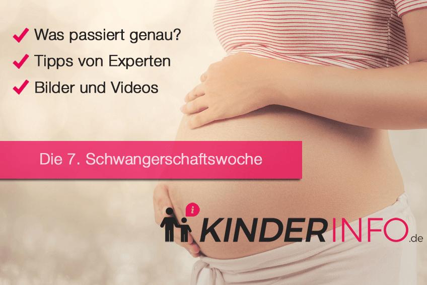 7 ssw ausfluss 7. Schwangerschaftswoche: