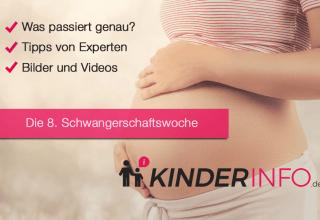 8. SSW - Schwangerschaftswoche