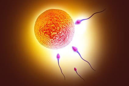 krankenkasse künstliche befruchtung
