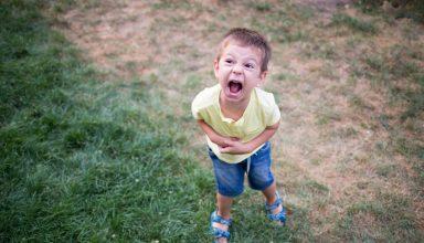Die Trotzphase bei Kindern