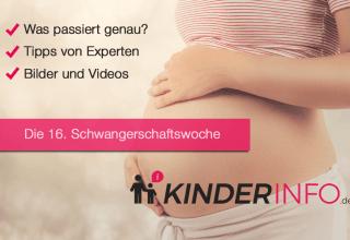 16. SSW - Schwangerschaftswoche