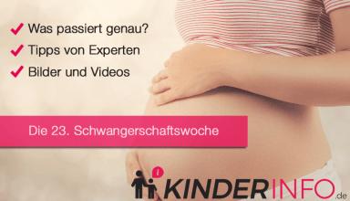 23. SSW - Schwangerschaftswoche